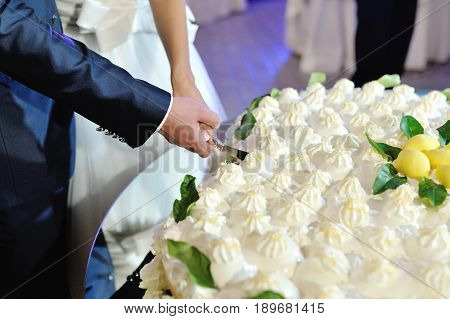 Bride and groom cutting a lemon wedding cake at wedding reception