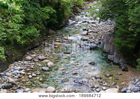 Forest Landscape With Rapid Shallow Stream With Crystal Clear Waters