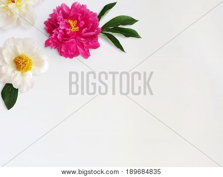 Feminine styled stock photo with peony flowers and leaves isolated on white background, top view.