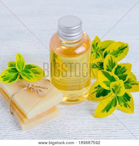 a bottle of organic liquid soap and homemade herbal soap bar with plants yellow and green