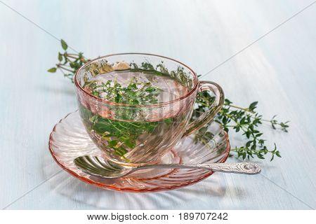 Herbal tea from fresh thyme leaves