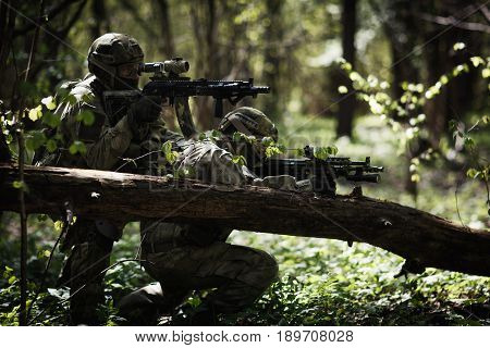 Two soldiers in camouflage among trees at forest