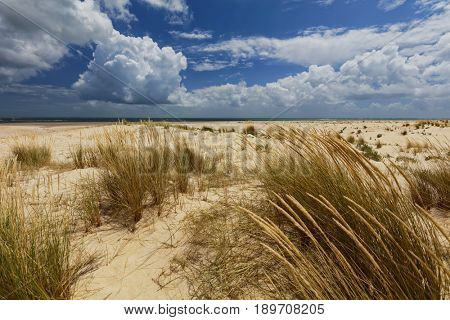 Sandy beach on an deserted island in Ria Formosa Natural Park, Portugal