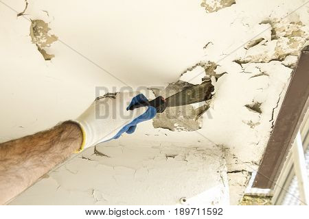 The construction worker's hand in the protective glove removes the old paint from the ceiling with a spatula.