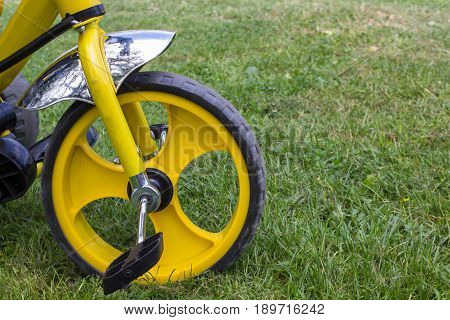 front wheel tricycle on the grass in the park