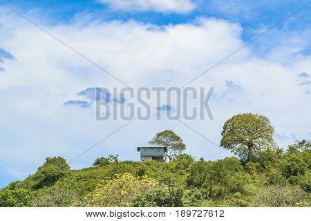 Landscape Meadow Tropical Scene, Ecuador