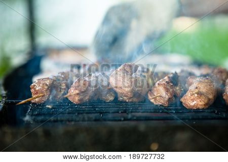 A steaming Cloud of smoke emanating from a hot juicy piece of meat lying on a barbecue grill, against the background of a blurry sunny day in the countryside.