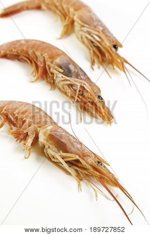 Luxury Shrimp