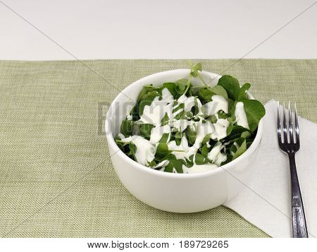 One white bowl of watercress salad with blue cheese salad dressing. Lunch of a fresh small leaf watercress salad with blue cheese salad dressing close-up.