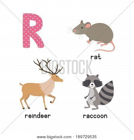 ABC letter R funny kid icons set: raccoon, reindeer, rat. Alphabet children education collection.