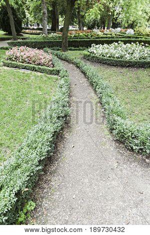 Path In A Garden