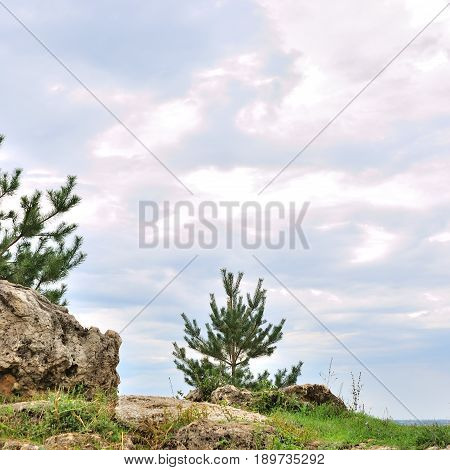 Sunny day in the mountains landscape with rocks