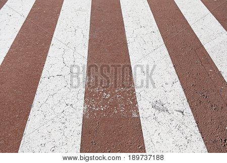 Zebra Crossing Red And White