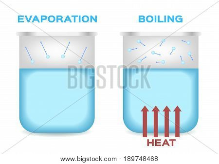 evaporation and boiling point of water . vector