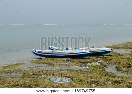 Two modern canoe boats with oars on the ocean beach