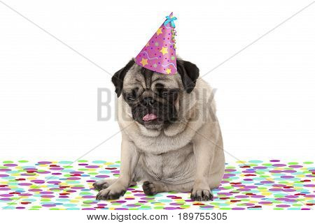 funny pug puppy dog wearing party hat sitting down on confetti drunk on champagne tired with hangover isolated on white background