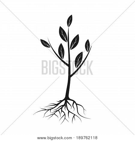 Tree icon black with roots and leaves. Young tree, sapling ready for planting. Planting of greenery concept. Gardening, agriculture. New plantings. Vector illustration on white background flat design.