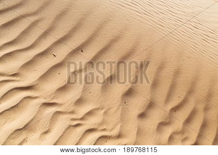 In Oman   Desert And The  Texture Line Wave
