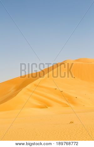 In Oman   Quarter And Outdoor  Sand Dune