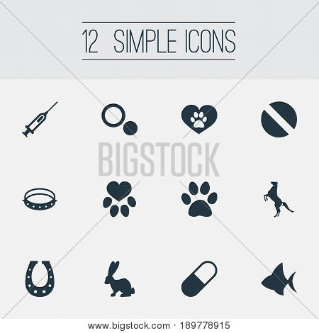 Vector Illustration Set Of Simple Animals Icons. Elements Circle, Ocean Fish, Luck Talisman And Other Synonyms Rabbit, Horse And Circle.