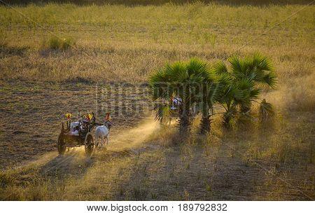 Rural Road At Sunset In Bagan, Myanmar