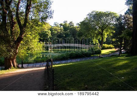 background, bench, blue, bow bridge, bridge, bright, bush, central park, central park new york, environment, garden, grass, green, lake, landscape, leaf, nature, new york, outdoor, park, pathway, road, sky, summer, sunny, tree, walkway, water