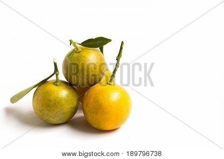 Closed up of kumquat orange that placed on white background