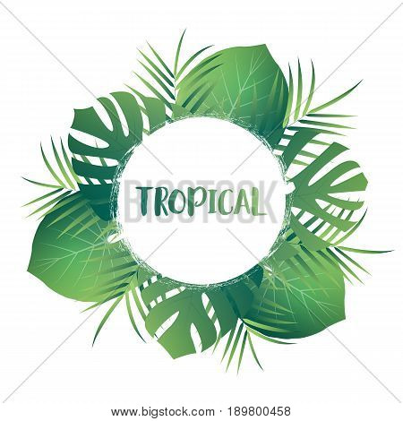 Tropical palm leaves. Vector exotic leaves. Tropic card template with jungle leaves