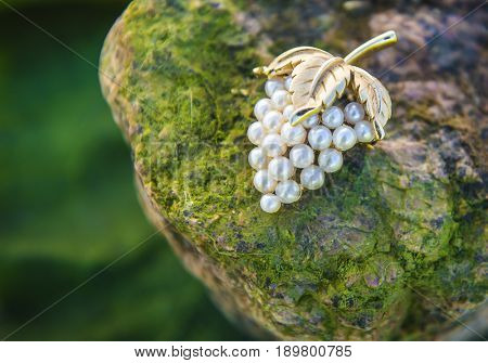Vintage brooch. Close-up. Pearl. Bunch of grapes