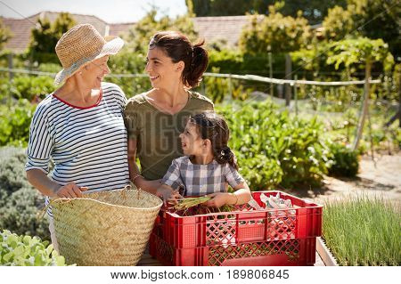 Mother With Adult Daughter And Granddaughter On Allotment