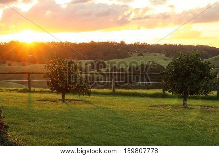 A lovely sunset in the rural country