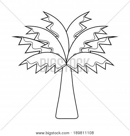 line palm tree with leaves and vegetation vector illustration