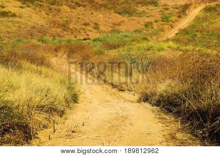 Bike path and hiking trail surrounded by an arid field of grasslands taken in the Whittier Hills, CA