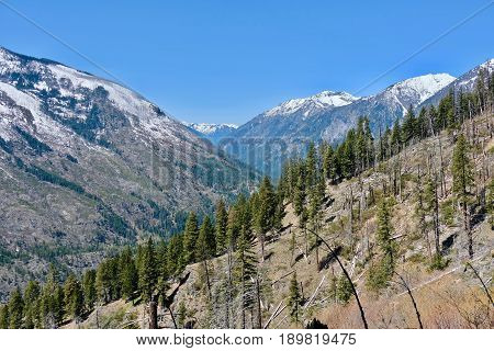 Layers of mountains and trees. Icicle Ridge trail in Central Cascade Mountains near Leavenworth. Seattle. Washington. United States