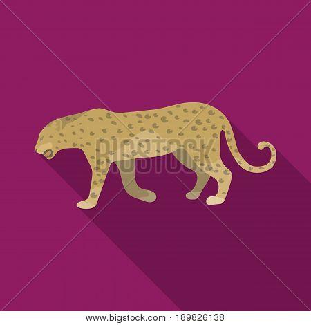 Leopard.African safari single icon in flat style vector symbol stock illustration .