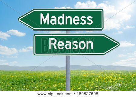Two Green Direction Signs - Madness Or Reason