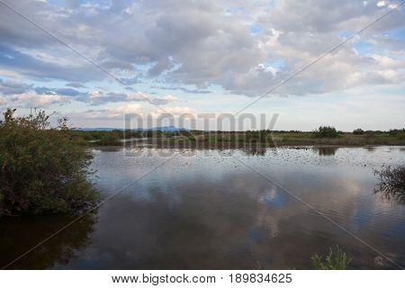 Beautiful landscape . Evros river in Greece.