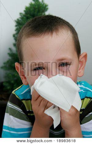 Fünf Jahre alter Junge mit Gewebe seine Nase weht. Kind mit Allergien, Konjunktivitis und schwarze Ringe