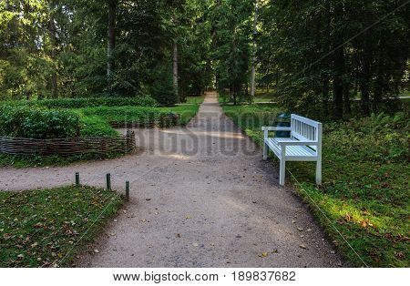 Alley with wooden bench and old trees in park of the village Mikhailovskoye Pushkinskiye Gory Pskov region Russia