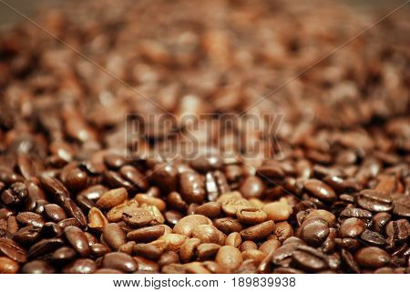 close up of roasted coffee beans that can be used for coffee shops , coffee roasters , roasting machines industry