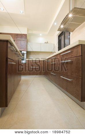 The new kitchen room, modern design / luxury kitchen