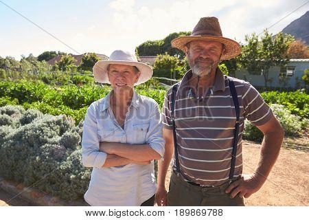 Portrait Of Mature Couple Standing On Community Allotment