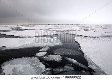 Ice-floes and Water outside Spitsbergen. Svalbard Norway