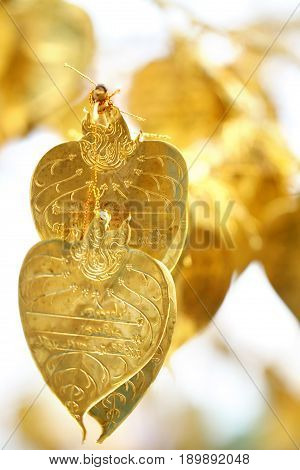 group of traditional believed gold leaf among Buddhism in Thailand, wallpaper, backgrounds, postcard, poster