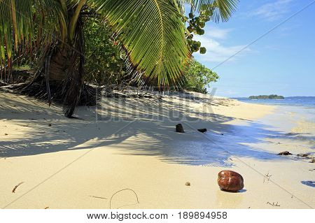 Tropical Beach of Zapatilla Sur. Bocas del Toro Panama