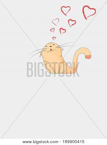 Enamored Cat.