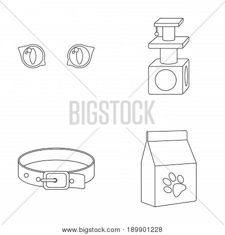 Cat s-eye, cat lodge, collar, package with food.Cat set collection icons in outline style vector symbol stock illustration .