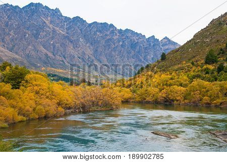 View of beautiful autumn leaves lake and The Remarkables mountain Queenstown New Zealand