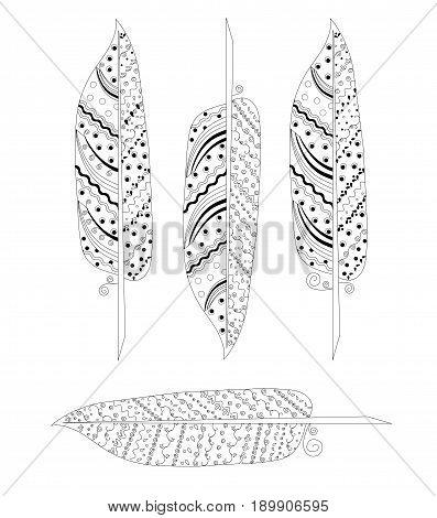 Monochrome zentangle feather set stock vector illustration