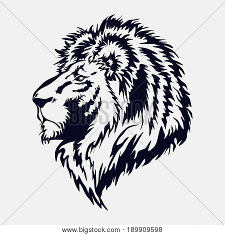 lion head by the royal cat the king of beasts vector image